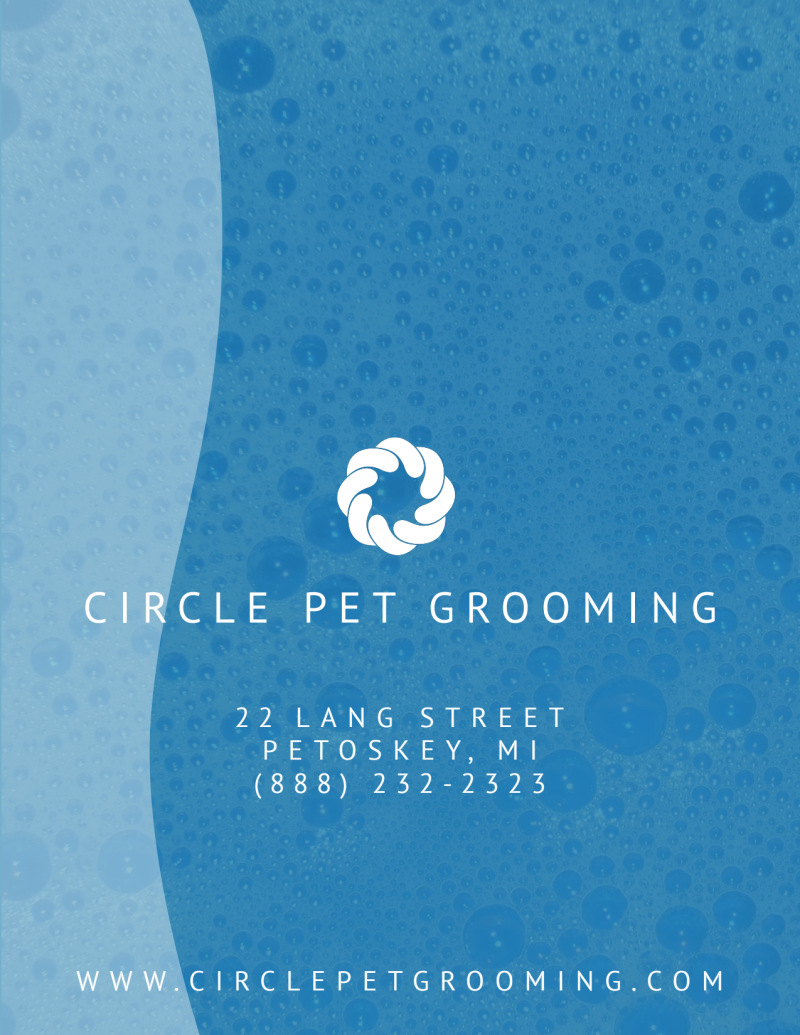 Luxury Pet Grooming Flyer Template Preview 3