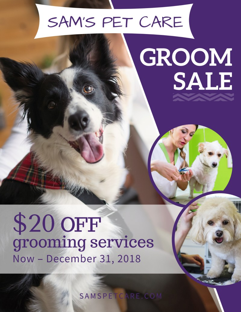 Pet Grooming Sale Flyer Template Preview 2