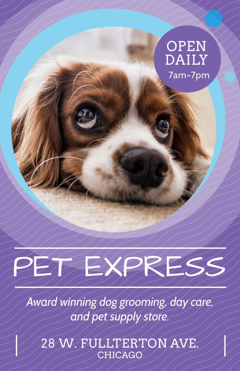 Award Winning Pet Grooming Poster Template Preview 2