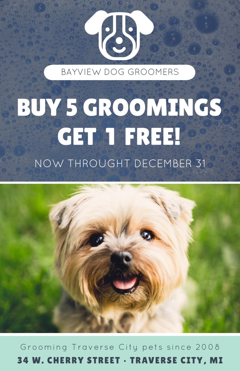 Bayview Pet Grooming Poster Template Preview 2
