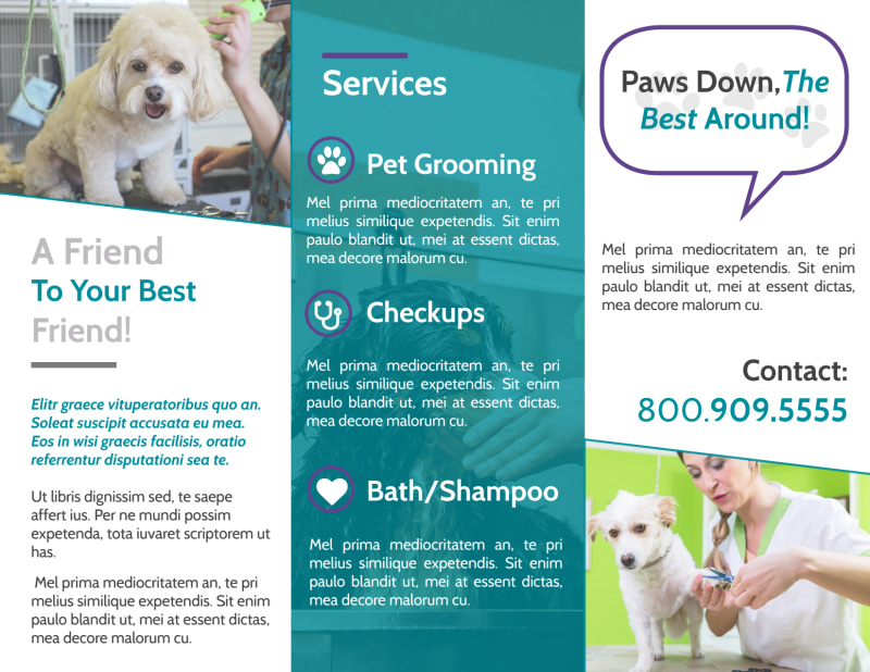 Pet Grooming Tri-Fold Brochure Template Preview 3