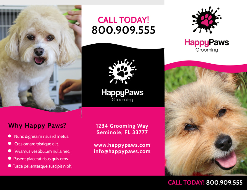 Fun Pet Grooming Tri-Fold Brochure Template Preview 2