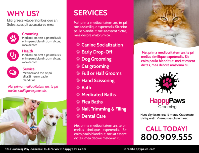 Fun Pet Grooming Tri-Fold Brochure Template Preview 3