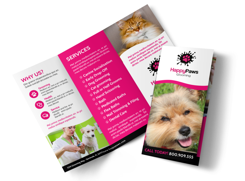 Fun Pet Grooming Tri-Fold Brochure Template Preview 1