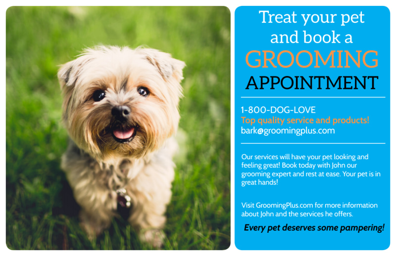 Grooming Appointment Postcard Template Preview 2