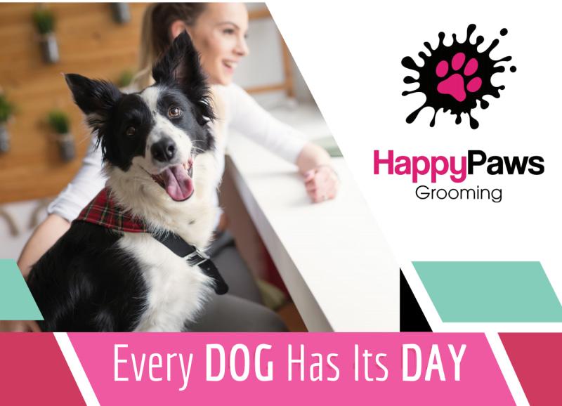 Pet Grooming EDDM Postcard Template Preview 2