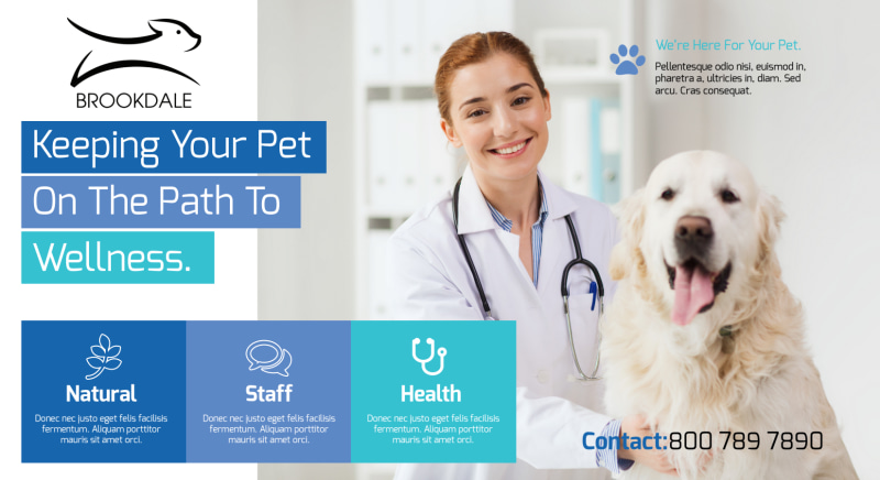 Awesome Veterinary EDDM Postcard Template Preview 2