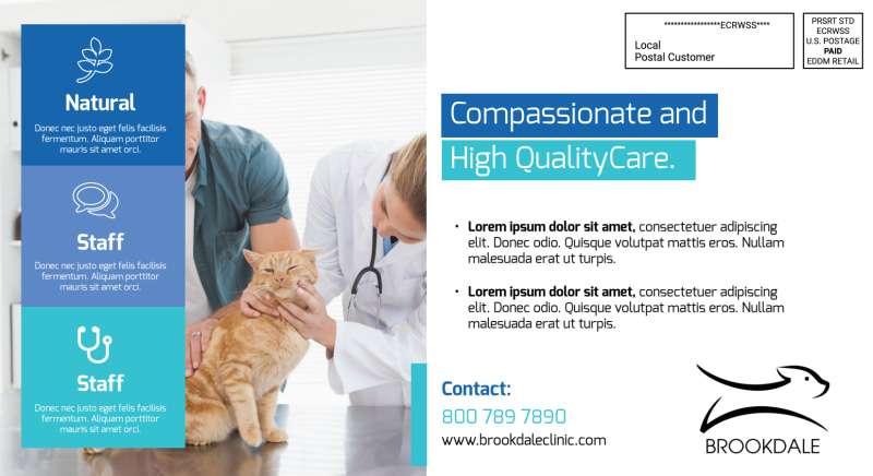 Awesome Veterinary EDDM Postcard Template Preview 3