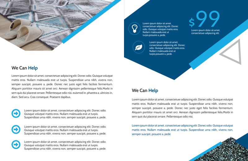 Pro Carpet Cleaning Bi-Fold Brochure Template Preview 3