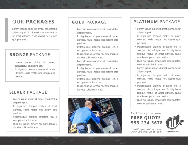 Black & White Window Cleaning Tri-Fold Brochure Template Preview 3