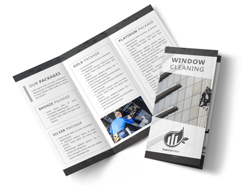 Black & White Window Cleaning Tri-Fold Brochure Template Preview 1