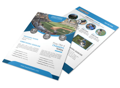 Summer Baseball Flyer Template preview