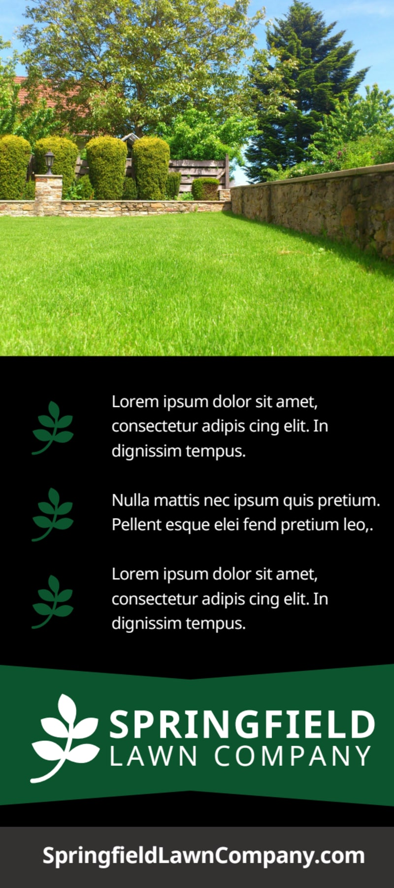 Lawn Company Flyer Template Preview 3