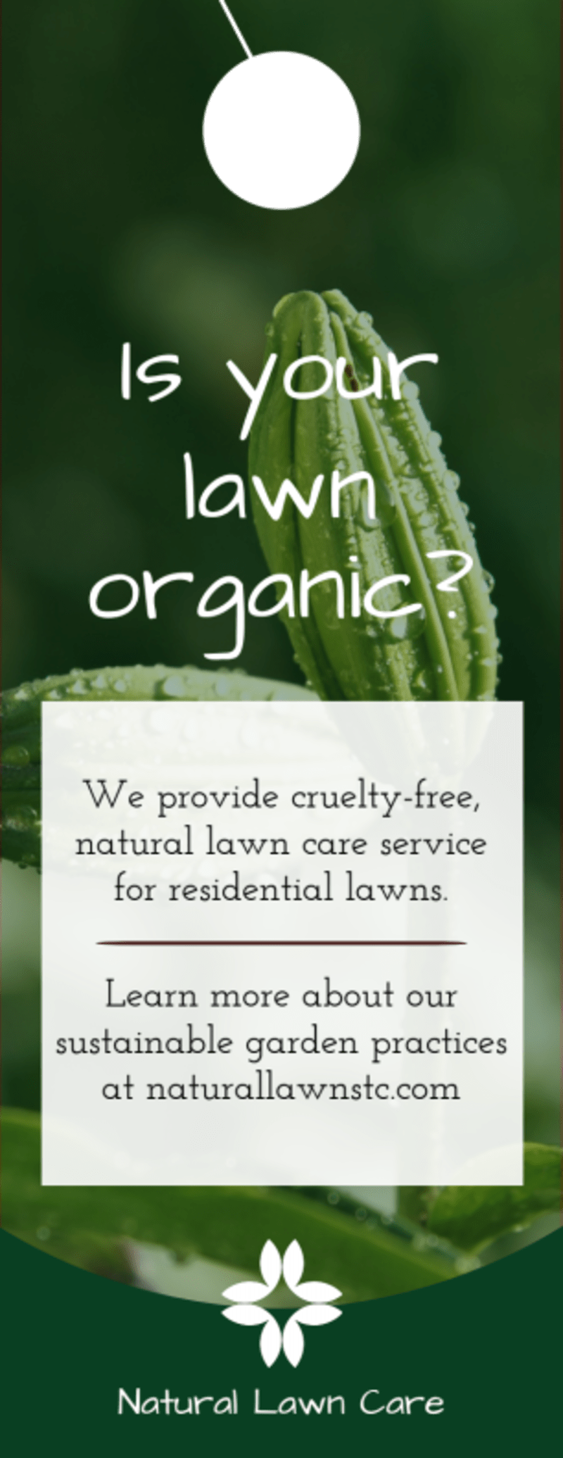 Organic Lawn Care Door Hanger Template Preview 2