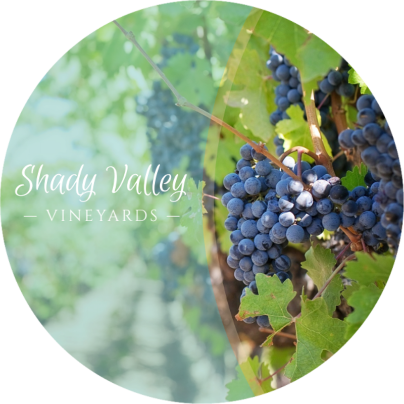 Shady Valley Wine Coaster Template Preview 2