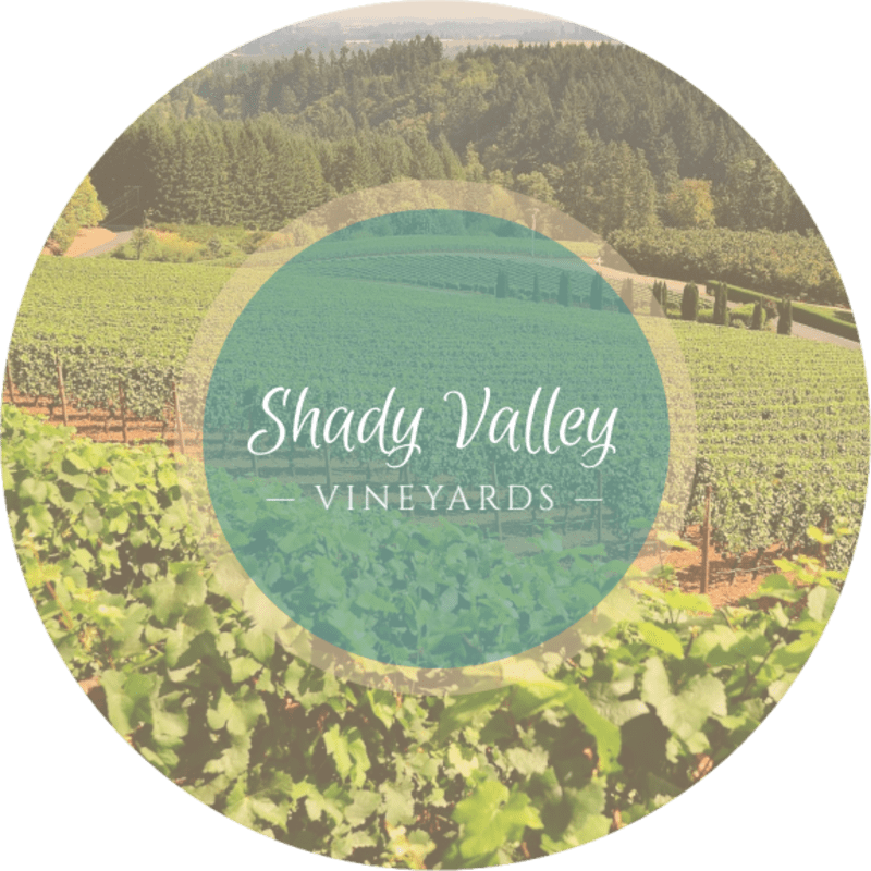Shady Valley Wine Coaster Template Preview 3