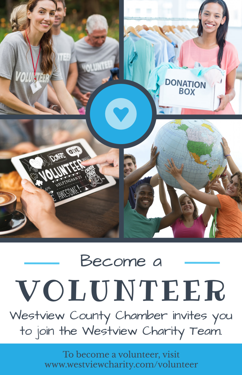 Volunteer Charity Poster Template Preview 2