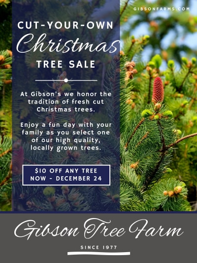 Christmas Tree Sale Poster Template Preview 1