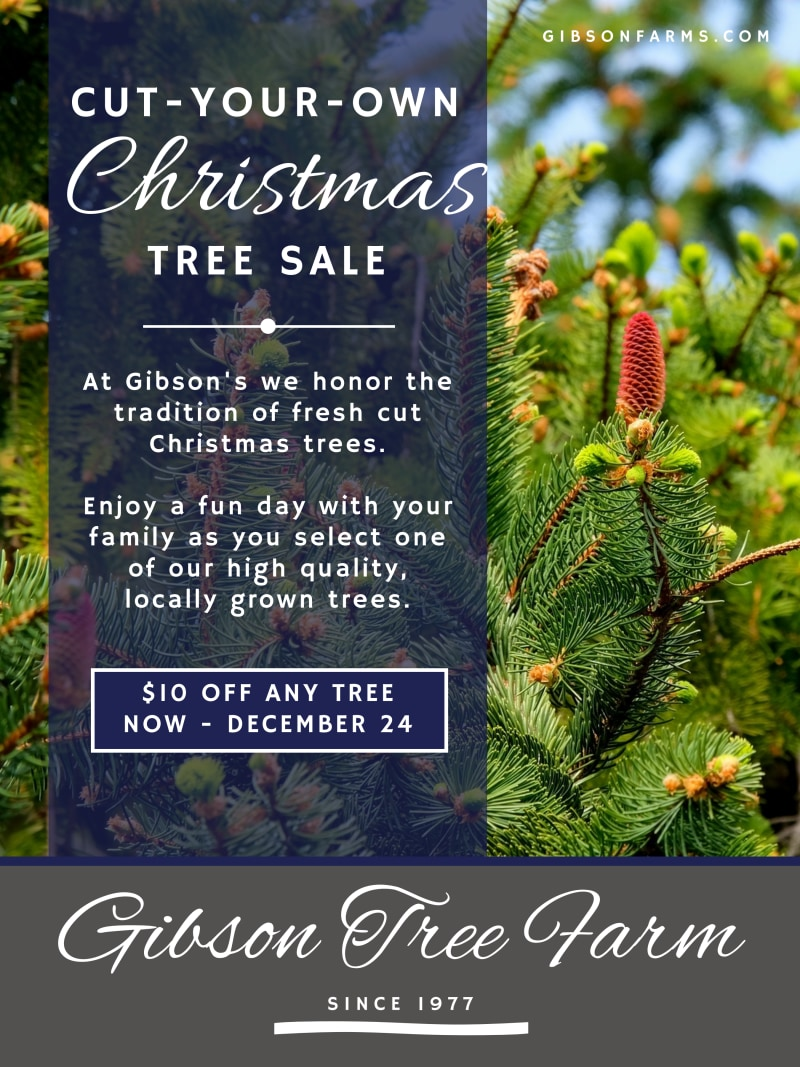Christmas Tree Sale Poster Template Preview 2