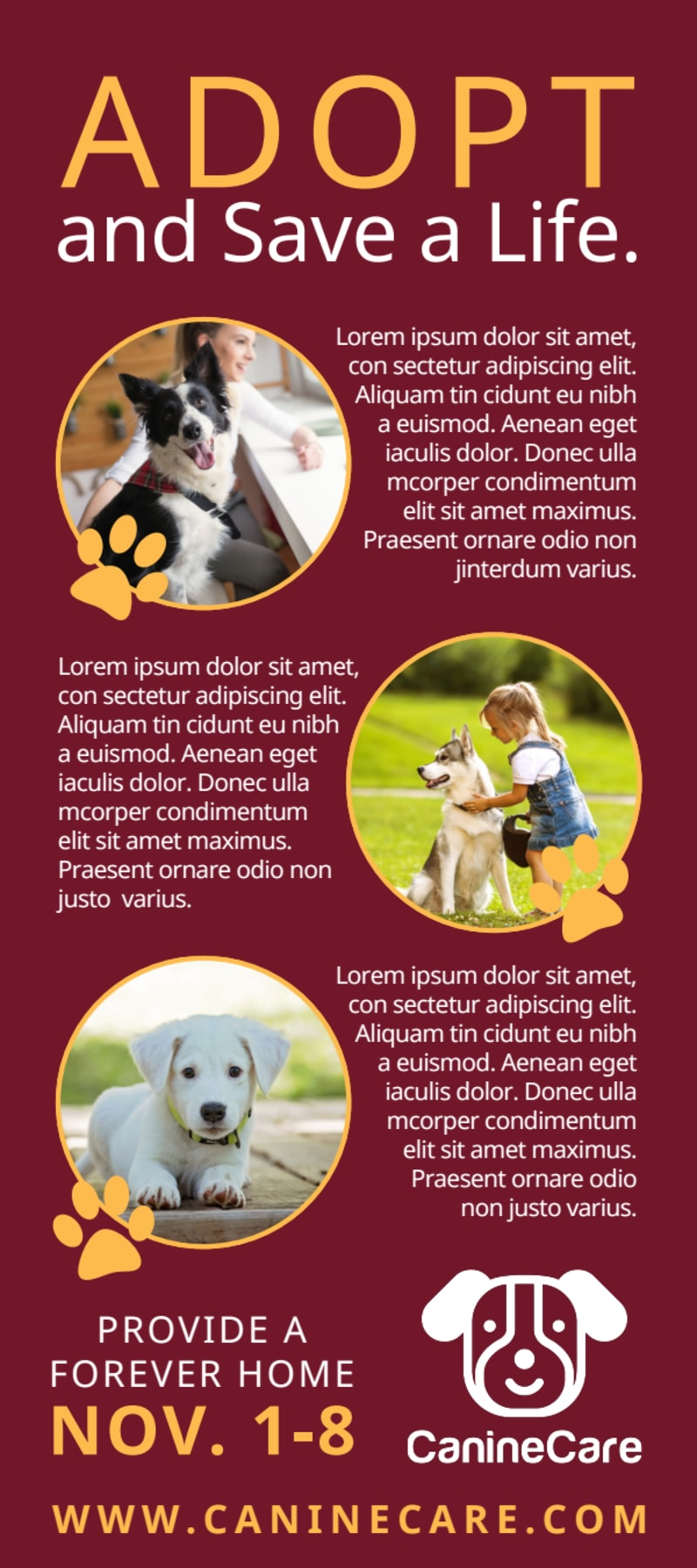Awesome Pet Adoption Drive Flyer Template Preview 3