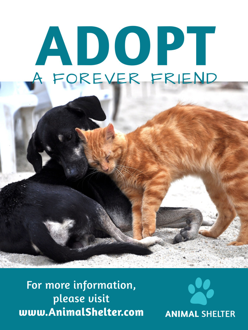Pet Adoption Poster Template Preview 2