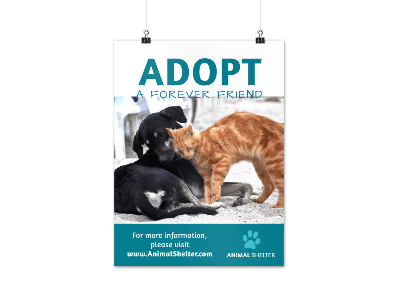 Pet Adoption Poster Template Preview 1