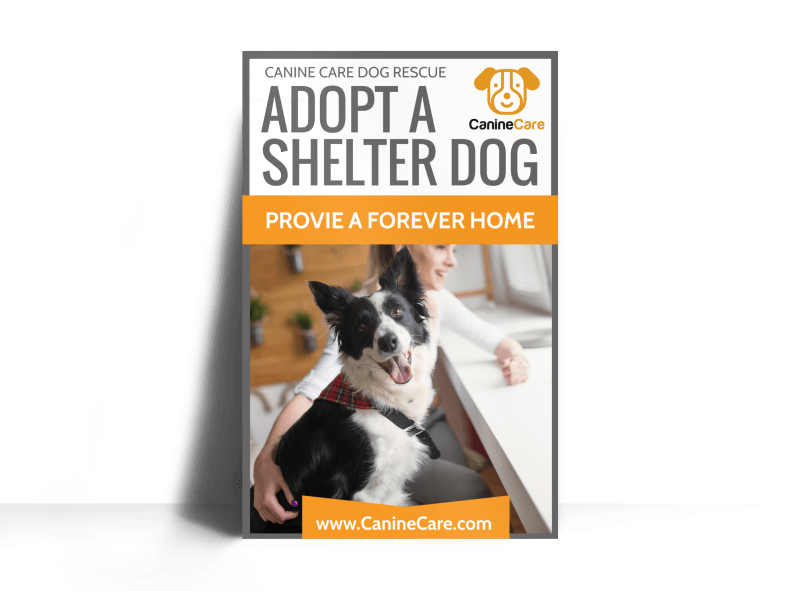 Pet Adoption Shelter Poster Template Preview 1