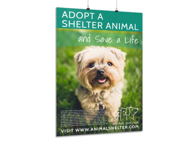 Pet Shelter Adoption Poster Template
