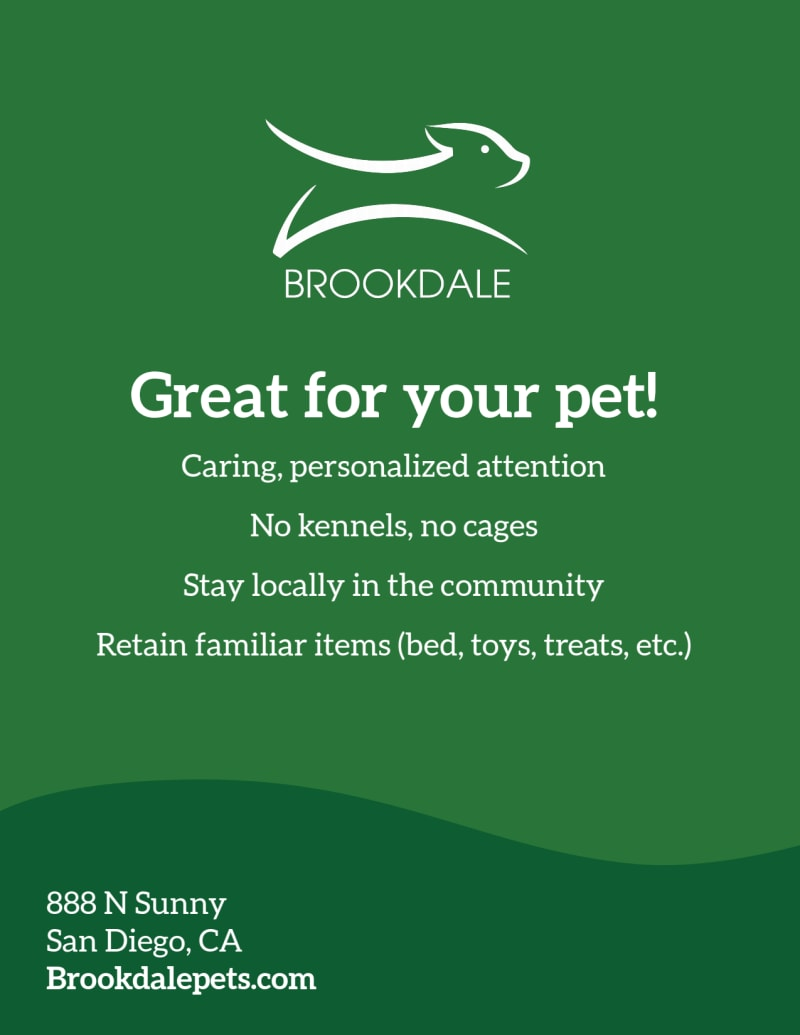 Pet Boarding Flyer Template Preview 3