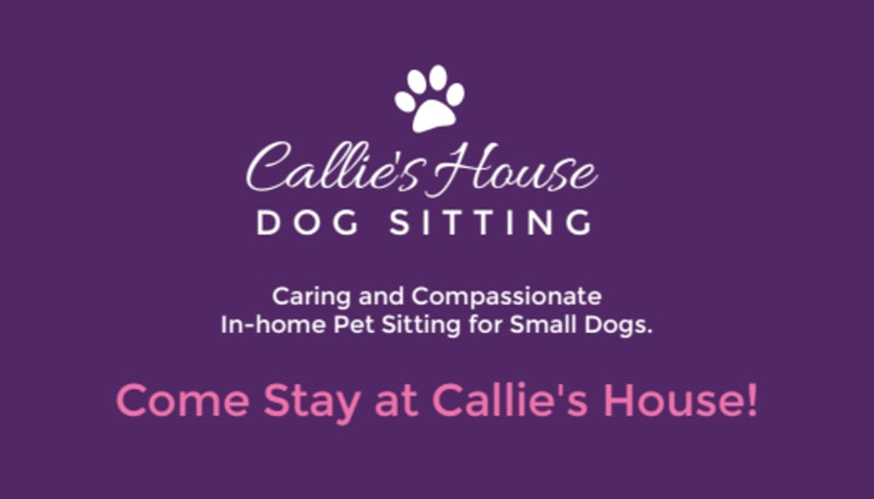 Pet Sitting Business Card Template Preview 3