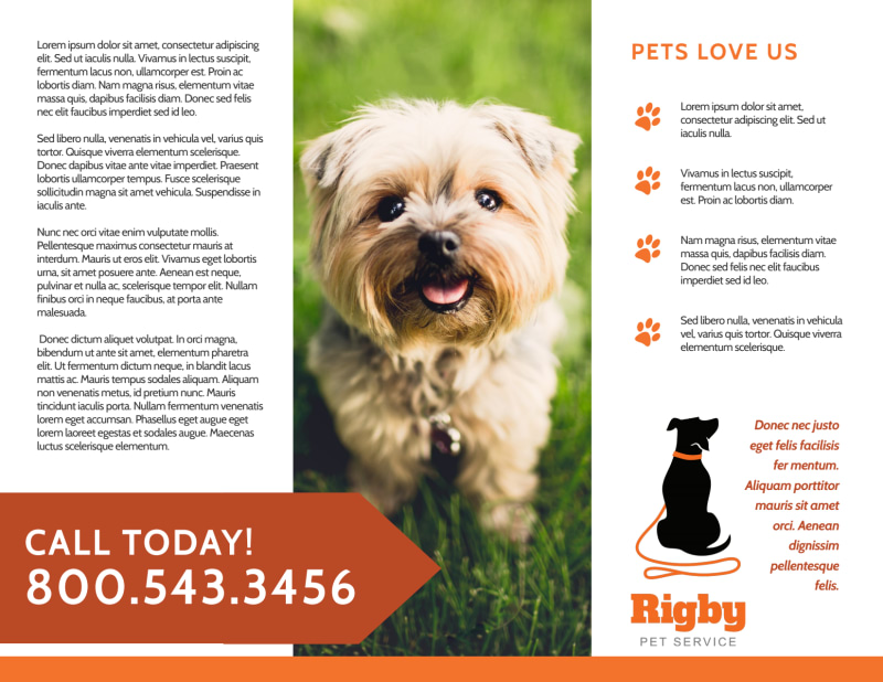 Awesome Pet Sitting Tri-Fold Brochure Template Preview 3