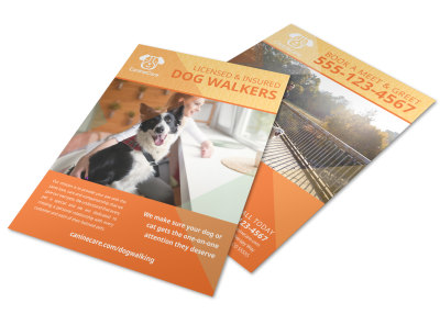 Awesome Dog Walking Flyer Template preview
