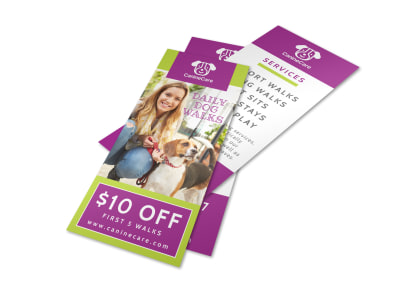 Daily Dog Walking Flyer Template preview