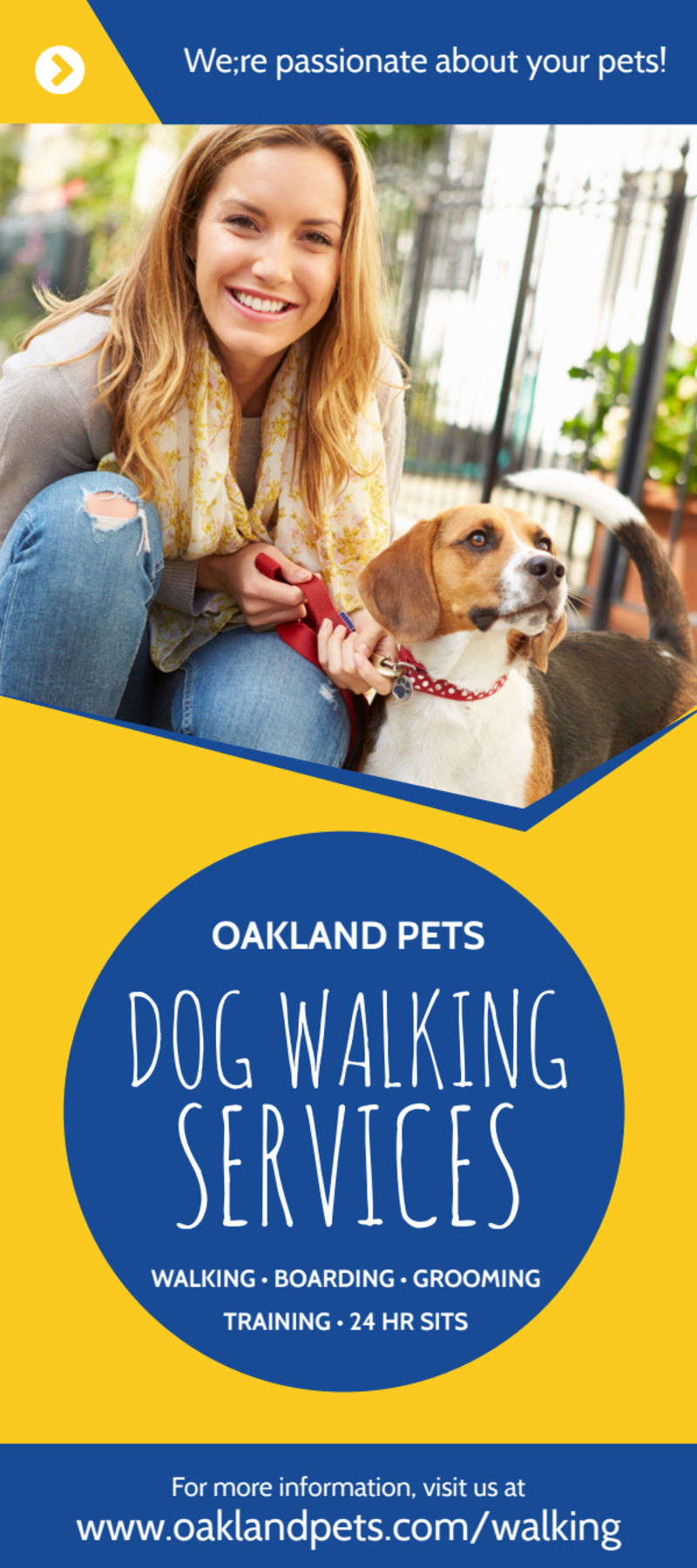 Blue & Yellow Dog Walking Flyer Template Preview 2