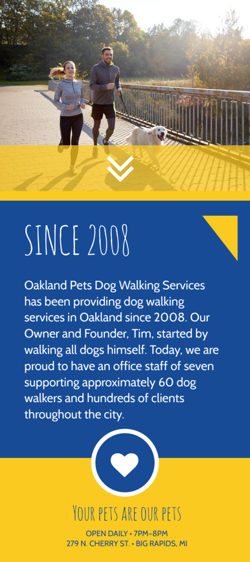 Blue & Yellow Dog Walking Flyer Template Preview 3