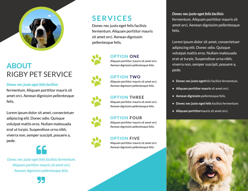 Beautiful Dog Walking Tri-Fold Brochure Template Preview 3