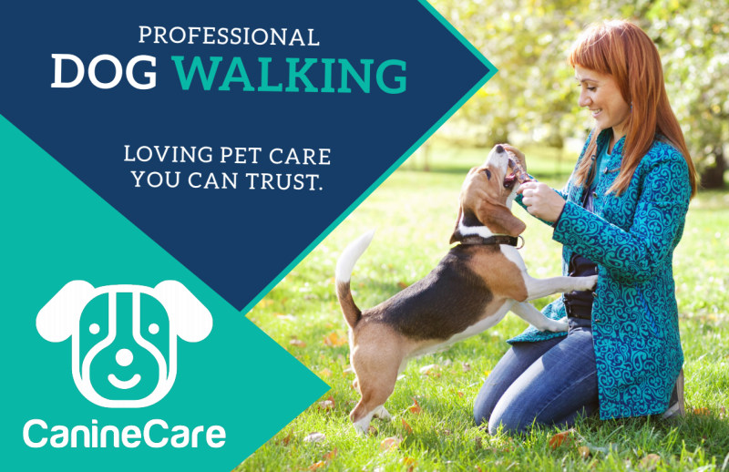 Professional Dog Walking Service Postcard Template Preview 2