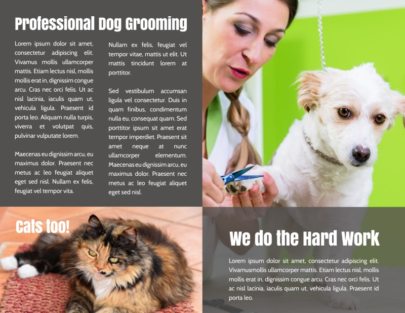 Professional Dog Grooming Bi-Fold Brochure Template Preview 3