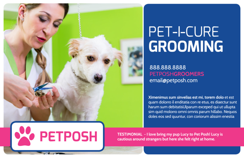 Pro Dog Grooming Postcard Template Preview 2