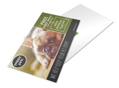 Dog Walking Promo Postcard Template  preview