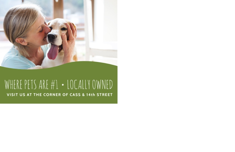 Dog Walking Promo Postcard Template Preview 3