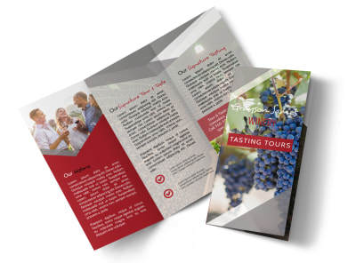 Wine Tasting Tour Tri-Fold Brochure Template preview