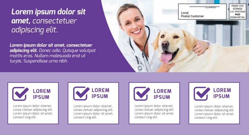 Family Veterinarian EDDM Postcard Template Preview 3