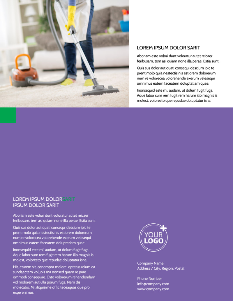 Carpet Cleaning Flyer Template Preview 3