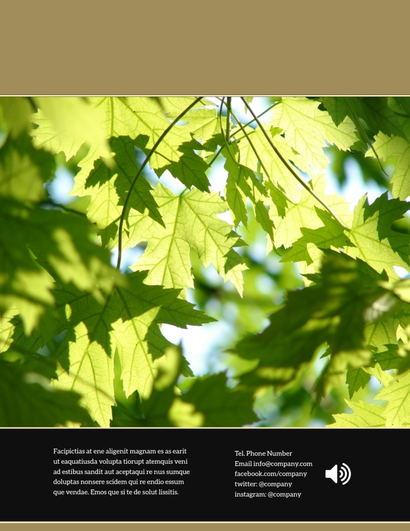 Tree Transplanting Service Flyer Template Preview 3
