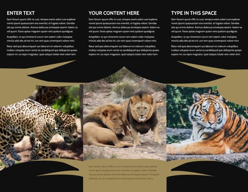 African Safari Brochure Template Preview 3
