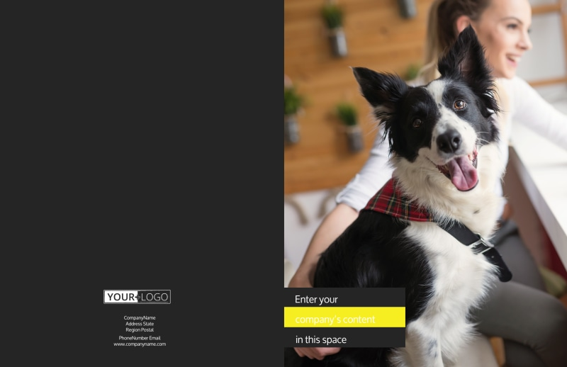 Shaggy Pet Grooming Brochure Template Preview 2
