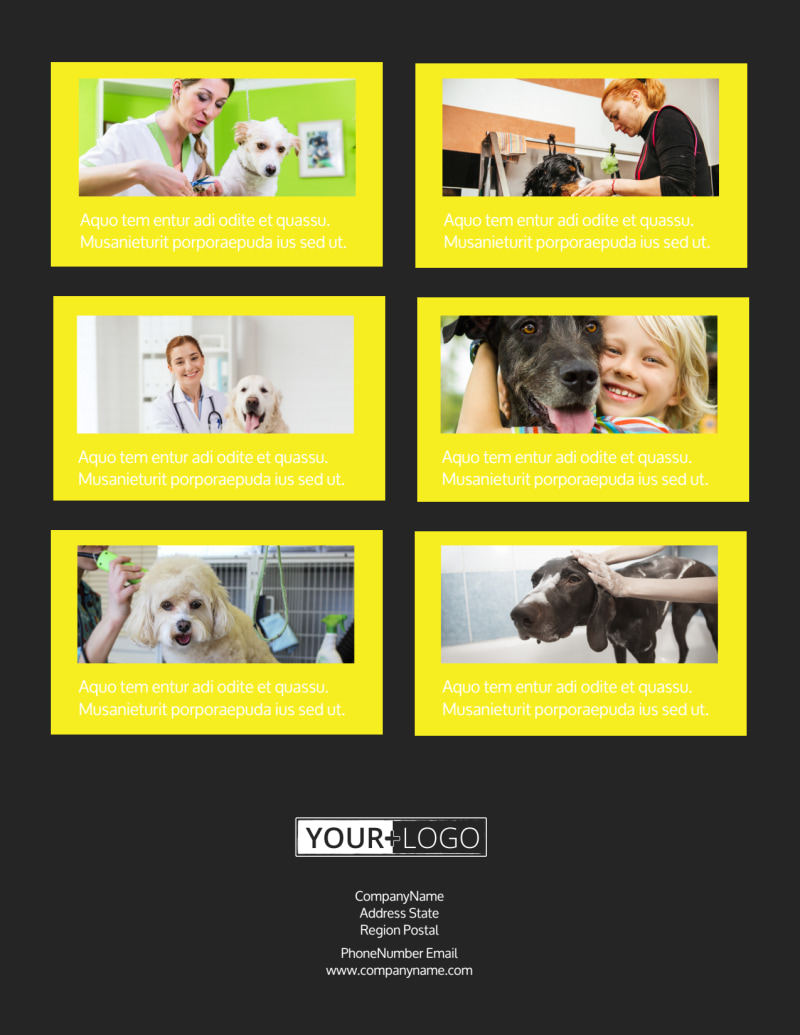 Shaggy Pet Grooming Flyer Template Preview 3