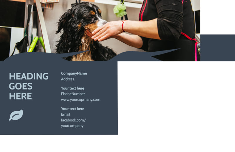 Pet Grooming Postcard Template Preview 3