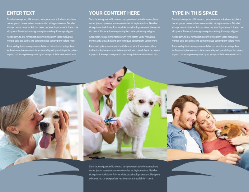 Pet Grooming Brochure Template Preview 3